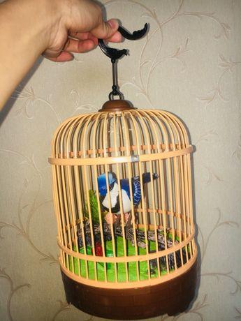 Птичка поющая