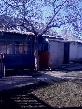 Продам дом  Оренбургская обл Акбулакский р, он село новогопавловка