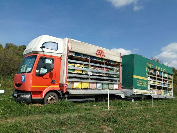 Camion 2003 si remorca 2007 apicola pt 100 stupi