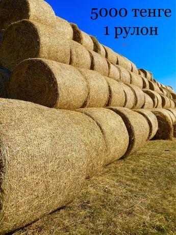 Солома с травами