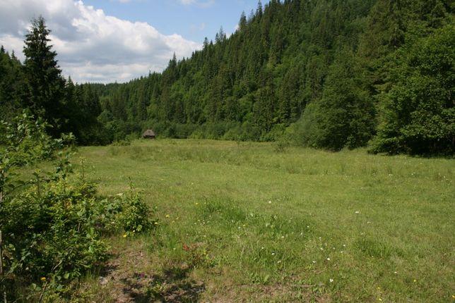 Vand teren pentru pensiune/cabana in Campulung Moldovenesc