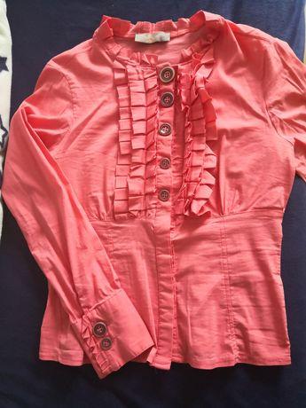 Camasi si bluze de calitate