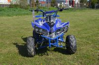 Atv Renegade Airsport 125cc/Automat Diverse Culori +Stikere