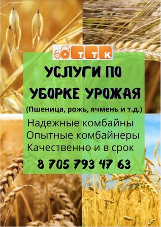 Услуги по уборке урожая (пшеница, рожь, ячмень и т.д.)