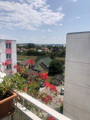 Apartament de vanzare 2 camere Ludus