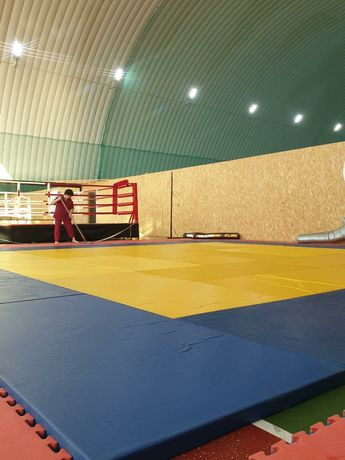 Татами маты judo борцовский ковер