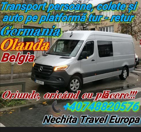 Transport persoane România Germania Belgia Olanda