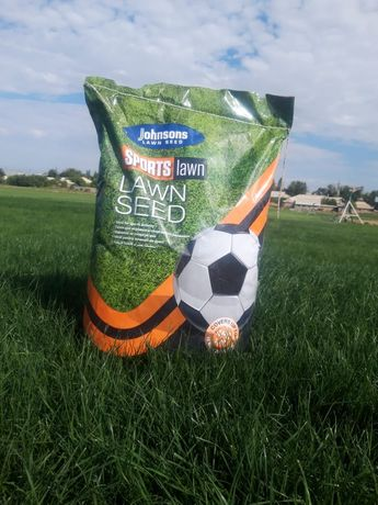 Газон. Lawn seed gazon
