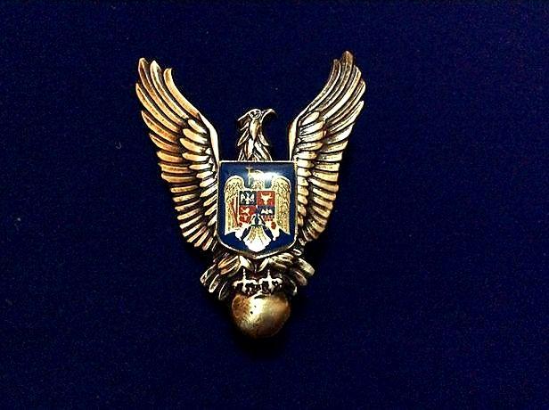 Insigna - Specialist de clasa - Aviatie - Pilot militar - neclasificat