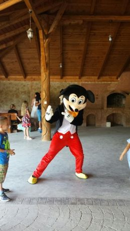 Vand Mascote Mickey si Minnie Mouse