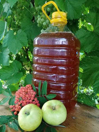 Продам луговой свежий мёд. 1.5 л - 2300 т 5л - 8200 т
