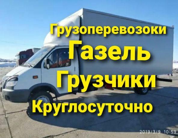 Дешёвые газель edyi379 fdo