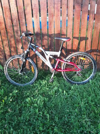 Bicicleta FULLY DINOTTI X2005 F
