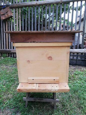Vand lazi noi albine -90 lei și vechi-50 lei