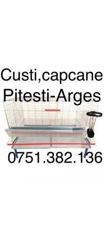Cusca gaini ouatoare 1N/200 (20 gaini) + suport de sustinere  Cusca pe