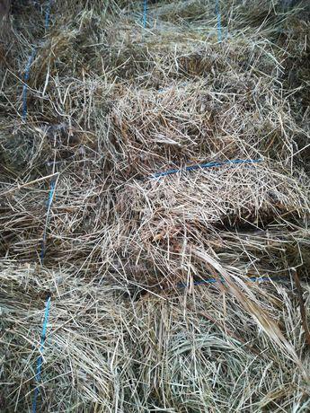 Baloti de iarbă cu lucernă