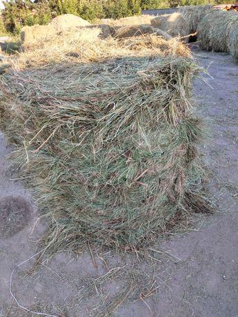 Продам  сено  в рулонах