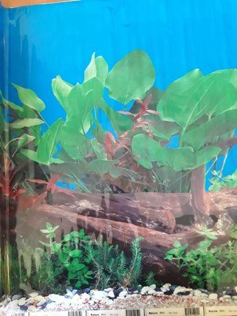 Фон для аквариума 25м