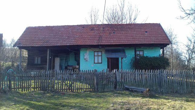 Vând casa în Mesteacan