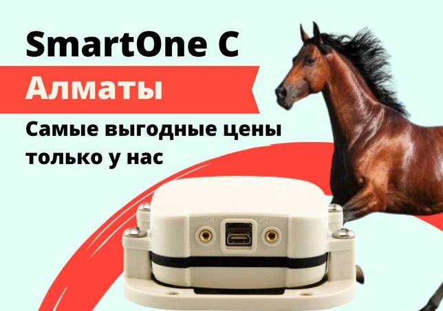 GPS трекер для лошадей в Алматы