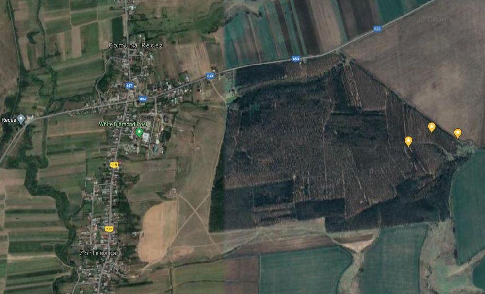 Padure 20ha lângă Recea - Slatina, cu amenajament silvic valabil. Recea - imagine 1