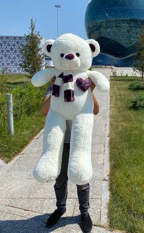 Мишка Астана. Мишки Нур-Султан. Медведь Мягкая игрушка. Плюшевые Мишки