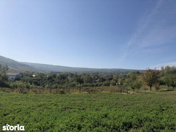 Parcele teren Tomesti - Sala Sport