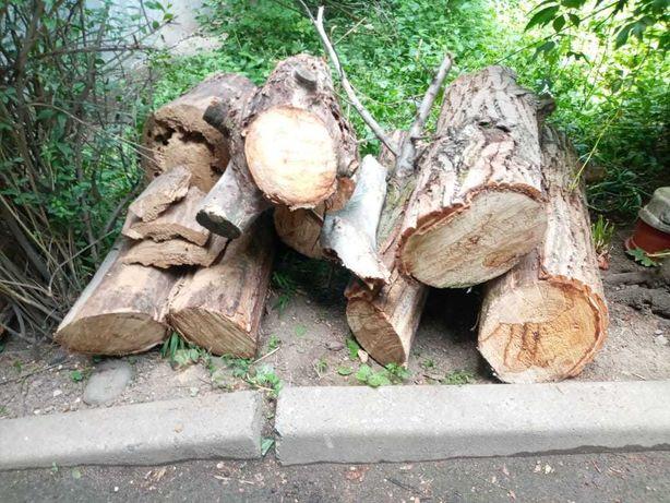 Продам дрова сухие