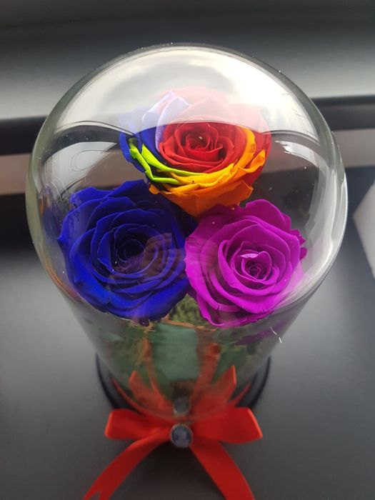 Cadou trandafir criogenat in cupola cristalina Bucuresti - imagine 1