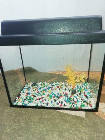 Продам б/у аквариум