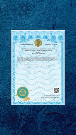 Регистрация патентов, авторских прав и товарных знаков