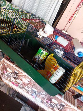 Cusca hamster ,porcușor de guinea ,arici, iepure