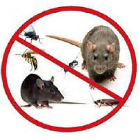 Riddex Pro Plus- оригинал! Уред против гризачи, хлебарки, мравки...