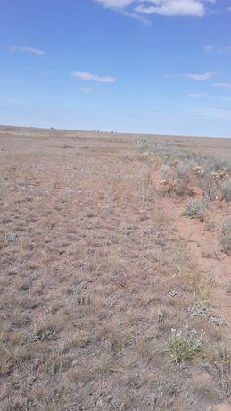 Продаётся земля сельхоз назначения