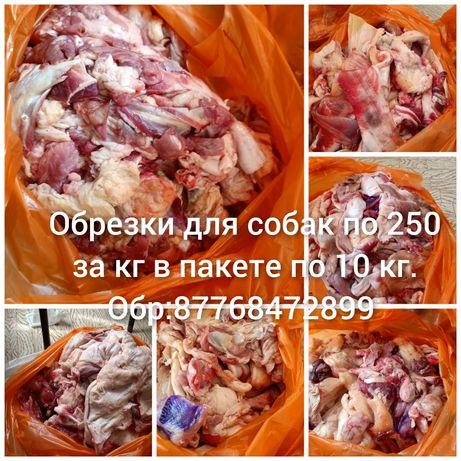 Мясо для собак по 250 за кг