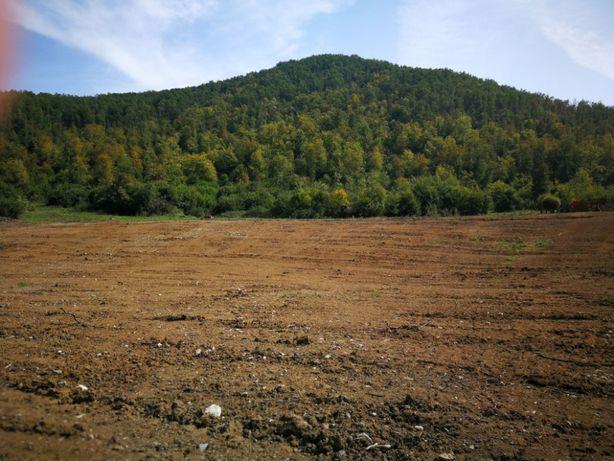 Vand teren la munte, in Apuseni, zona Buru, comuna Iara