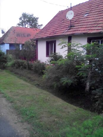 Două case cu curți separate