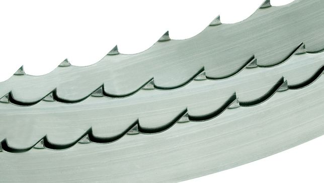 Pânze panglică pentru banzic ( gater ) MaxFlex 4400x38x1,14 (mm)