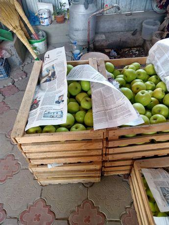 Продам яблоки золотой
