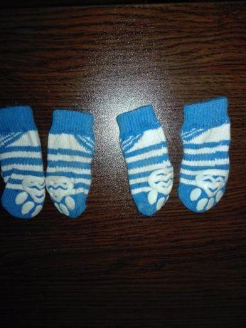 чорапки за куче