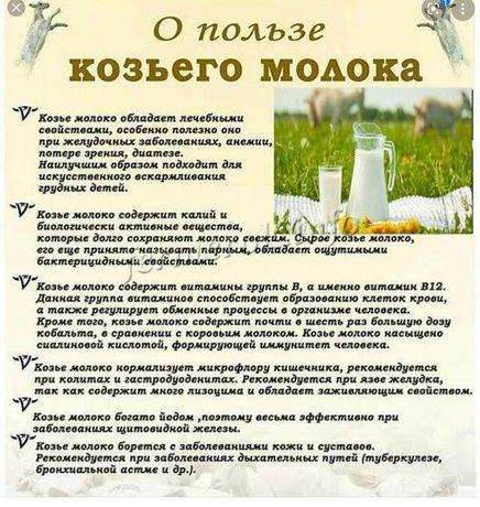 Козье молоко 100% натуральное