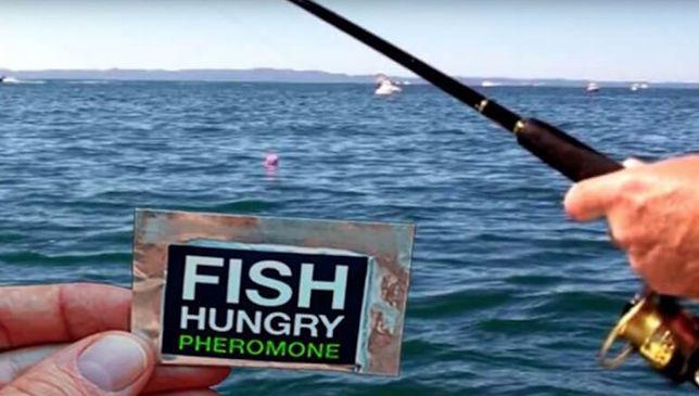 Профессиональный Рыболовный прикорм Фиш Хангри Супер клев на рыбалке