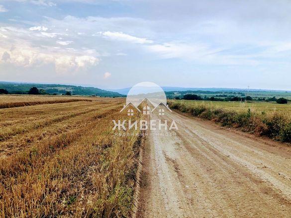 УПИ с площ 4200 кв.м. в село Кичево, обл. Варна