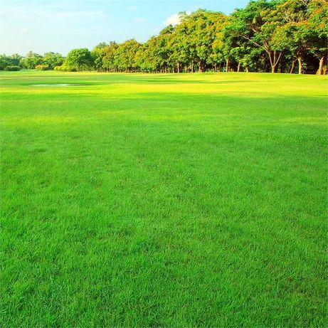 Скошу траву на участке