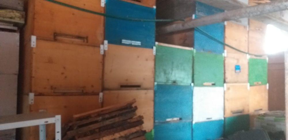 Vând cutii de stupi Razvad - imagine 1