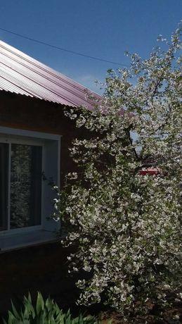 Продам дом в п.Дарьинское