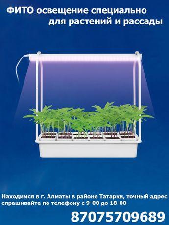 для выращивания любых растений рассады ФИТО ОСВЕЩЕНИЕ лампы прожектора