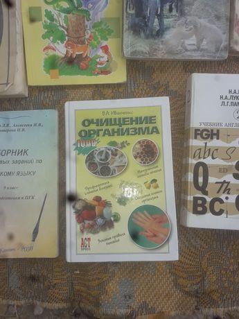 Книга Очищение организма,автор Иванченко.В.А.2004г.