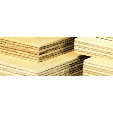 Placaj Tego plop 12 mm brut (1250x2500)