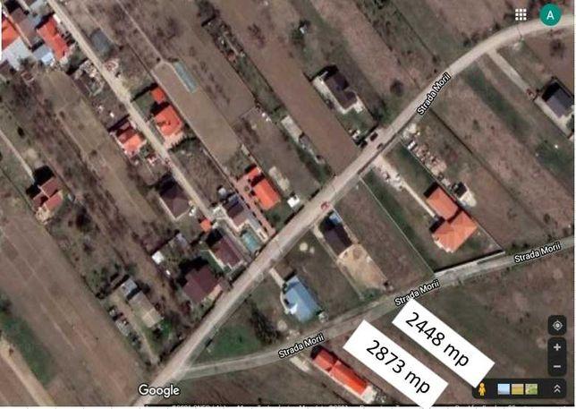 Vând loturi de casă Măgurele (Dumitrana) la 10km de București